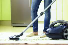 Cómo eliminar pulgas en tu casa